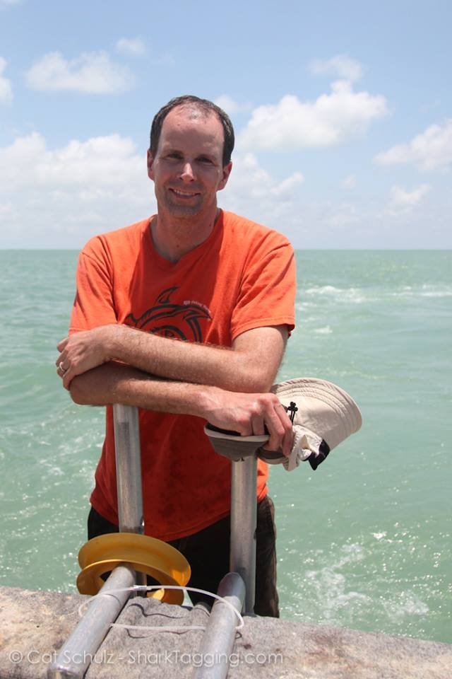 Duncan Irschick working with sharks in Florida. Image credit: Austin Gallagher