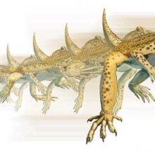 An illustration of an Uma lizard running