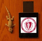 Gecko hanging on door next to iPad hanging via Geckskin™