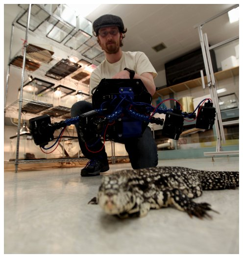 Photo of Dylan imaging Tegu lizard with a Beastcam