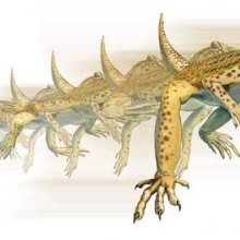 An illustration of an Uma lizard running