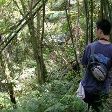 Gradudate student Chi-Yun Kuo chasing lizards. Image credit: Chi-Yun Kuo