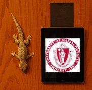 Gecko hanging on door next to iPad hanging via Geckskin™
